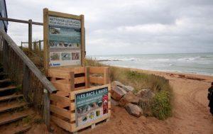 Des bacs à marée installés par l'association Nature Libre sur la côte d'Opale (photo T. Hemberger)
