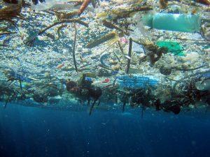 17 tonnes de déchets plastiques qui sont déversées chaque minute dans les océans (Photo Pinterest)